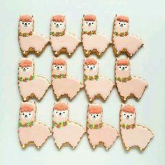 Alpaka cookies