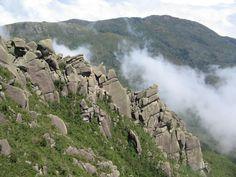 Vista tomada da base das Prateleiras - Parque Nacional de Itatiaia - RJ (Foto: Orlando MFN 2008)