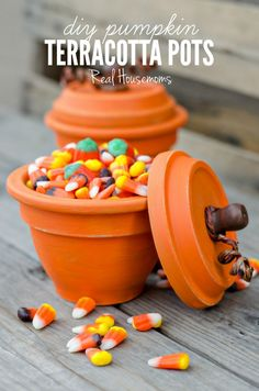 DIY Pumpkin Terracotta Pots | Real Housemoms