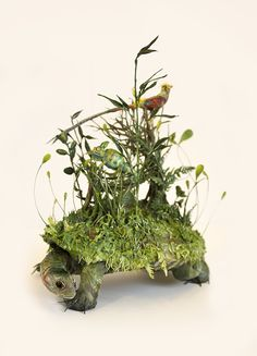 The place where everything is forgotten, 2016, small turtle with chameleon and golden pheasant,  moss, ferns, bamboo and botanical details. ooak mixed media sculpture by Ellen Jewett