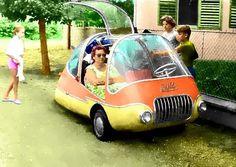 Hungarian Pajtas (Buddy), 1960's