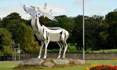Irish elk sculpture, Warrenpoint by Albert Bridge