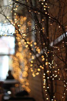 Frederiks Fairy Lights, Liverpool