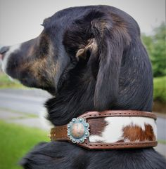 Excited to share this item from my shop: Custom Dog Collar *Inlaid Hair-On Cowhide* Made to Order! Custom Dog Collars, Dog Collars & Leashes, Leather Dog Collars, Dog Leash, Beaded Dog Collar, Leather Projects, Pet Clothes, Dog Clothing, Custom Leather