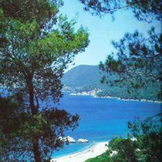 Milia beach, Skopelos island ❤