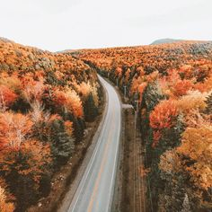 All roads lead to home when home is a feeling instead of a place ✨🍂 Falling in love with New England even more so this autumn! 😍 Have you been up here during fall? This blanket of color covering the land is out of a postcard! Nature Photography, Travel Photography, Backlight Photography, Photography Composition, Mountain Photography, Photography Aesthetic, Vintage Photography, Photography Ideas, Wedding Photography