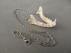 Bone Necklace Skunk Real Bone Gothic by BlackWolfTradingPost, $15.95