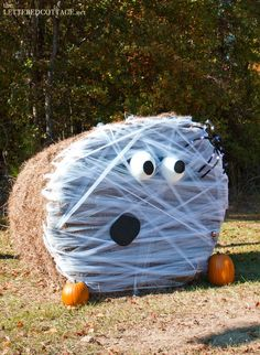 Shocked ghost 2014 Halloween hay bales decoration for yard - pumpkin, face Fröhliches Halloween, Creative Halloween Costumes, Halloween Decorations, Pumpkin Decorations, Winter Decorations, Halloween Painting, Halloween Snacks, Vintage Halloween, Hay Bale Decorations