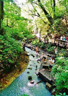 Noboribetsu forest  - Hokkaido, Japan