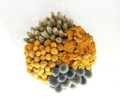 Garden flowers designed in a low modern cement bowl. The dried flowers include billy balls (craspedia), neutral wheat, gold yarrow and blue thistles