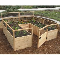 Outdoor Living Today 8 ft x 8 ft Cedar Raised Garden Bed with Deer Fence Kit Wayfair Wood Raised Garden Bed, Diy Garden Bed, Building A Raised Garden, Raised Beds, Cedar Garden, Fence Garden, Veg Garden, Vegetable Gardening, Deer Fence
