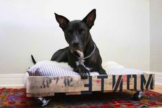 DIY Pallette Bed- do it for the kitties by the porch door