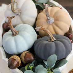 These Chalky Finish pumpkins from @thecasualcraftlete are absolutely adorable! We love seeing Chalky Finish in everyone's fall decor projects, share yours with #decoartprojects!