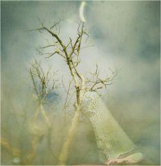 Jill Auville: Analog Photography