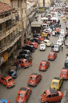 Fiat 500's in Italy [had to as @Emily Schoenfeld Gooch is convinced I'll drive one of these one day]