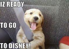 IZ READY TO GO TO DISNEY!