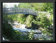 Rennie's River Walking Trail in St. John's, NL