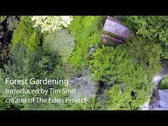 Permaculture Magazine uk, Part 1 of video series Living with the Land. This one, forest gardening with Martin Crawford. Recommended by seedysundayeb.org.uk. Eastbourne's seed saving movement.