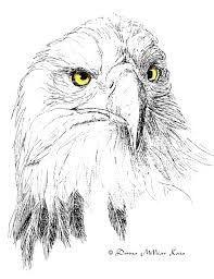 ink eagle drawings - Google Search