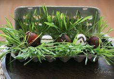 Nature Inspired Easter Decor...