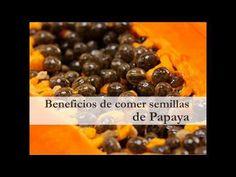Beneficios de comer semillas de Papaya