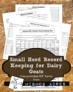 Free Printable Record Keeping for Small Dairy goat herds, from MigMog Acres