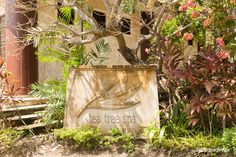 Tea Tree Spa, Holiday Inn Resort Batam