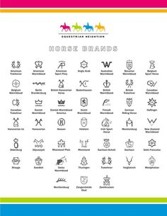Horse Breed brands