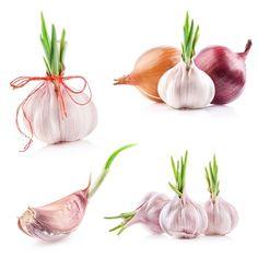 aglio germogliato Garlic Chives, Onion, Vegetables, Food, Garlic Benefits, Smell Good, Fennel, Sprouts, Planters