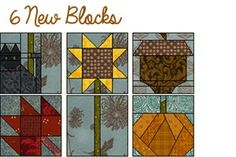 Download this beautiful project today! Add 6 new blocks and 32 new fabrics to your QDW, EQ6 or EQ7!