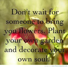 Beautiful Flower Quotes About Life: Flower Quotes About Life And Love Romance For Coulple ~ Mactoons Beauty Inspiration