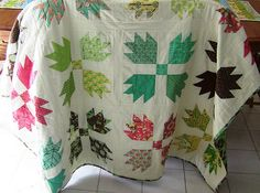 """bear paw quilt - - always on my """"to quilt one day"""" list - - why haven't I just made one???"""