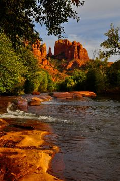 Viva la Voyage: The Beautiful Red Rocks of Sedona
