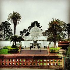 Golden Gate Park - Beautiful urban park right in the centre of #SanFrancisco