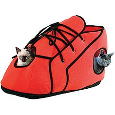 I ordered this for out cat.  I can hardly wait for it to arrive.