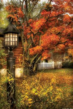 Autumn - House - Autumn Light Art Print by Mike Savad - Fall pictures nature - Autumn Art, Autumn Home, Autumn Leaves, Fall Trees, Fall Or Autumn, Autumn Painting, Winter, Fall Pictures, Fall Photos