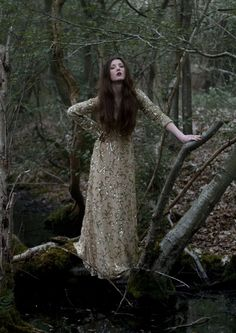 Enchanted Forest by Jessica Wright