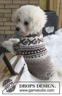 "Knitted DROPS dog's jumper with Norwegian pattern in ""Karisma"". Size XS - L. Free pattern by DROPS Design."
