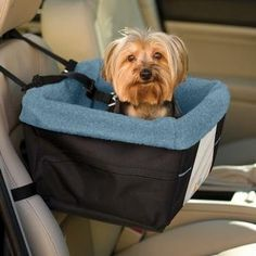 Kurgo Rover Dog Booster Seat, Black/Blue The Kurgo rover booster seat for dogs gives your pup his own comfortable car seat where he can Read more http://dogpoundspot.com/kurgo-rover-dog-booster-seat-blackblue/ Visit http://dogpoundspot.com for more dog review products