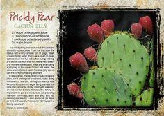 cactus jelly recipe postcard recipe for prickly pear jelly Pear Jelly Recipes, Prickly Pear Recipes, Jam Recipes, Canning Recipes, Canning 101, Recipies, Prickly Pear Jelly, Cactus Recipe, Pear Jam