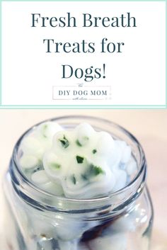 Fresh Breath Treats Fresh Breath Treats, dog mint treats, dog breath treats…don't suffer from your dog's awful breath! Puppy Treats, Diy Dog Treats, Homemade Dog Treats, Dog Treat Recipes, Healthy Dog Treats, Dog Food Recipes, Frozen Dog Treats, Dental Treats For Dogs, Dog Biscuit Recipes