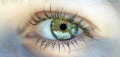 O Olho. Criação incrível