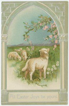 Lambs Easter Joys.......................lbxxx.