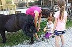 erste Hufpflege Horses, Kids, Animals, Animais, Children, Animales, Animaux, Animal, Horse