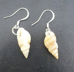 Check out this item in my Etsy shop https://www.etsy.com/listing/248721441/seashell-earrings. Only one pair left.