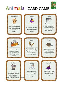 Animals Card Game