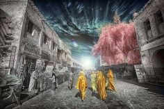 GaborHK's Photos - ViewBug.com Infrared Photography, World Best Photos, Photo Contest, Cool Photos, Community, Painting, Pageant Photography, Photography Challenge, Painting Art