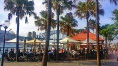NYE at Circular Quay