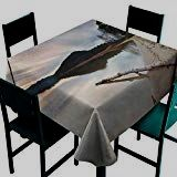 ScottDecor Driftwood Kitchen Table Cover Landscape of Lake Shoreline with The Dead Tree Trunk in The Water Digital Print Sand Brown Tablecloth for Square Table W x L - Driftwood 4 Us Driftwood Kitchen, Landscaping Around Trees, Square Tables, Table Covers, Satin Fabric, Digital Prints, Hand Sewn, Landscape