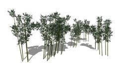 Large preview of 3D Model of Bamboo